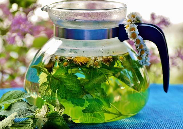 bylinkový čaj v konvici