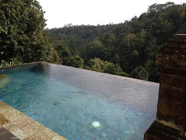 výhled na les z bazénu