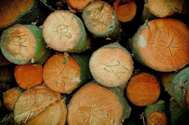 Borovice-klády položené na sobě