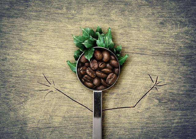 Zelená káva hubnutí